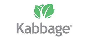 Kabbage - Retail Minded Resource